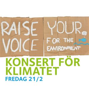 Raise Your Voice (for the environment)