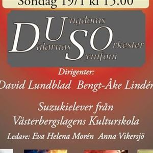 Dalarnas ungdomssymfoniorkester