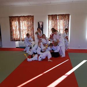Aikido-träning för barn och ungdomar