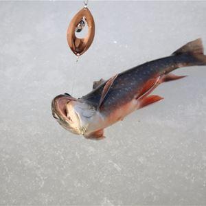 Sportlovsfiske