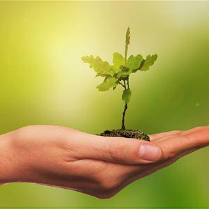 HOPE – den grönskande framtid är vår