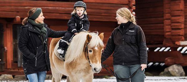 Sportlov på Torekällberget