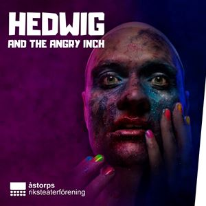 Internet, Hedwig and the Angry Inch - musical
