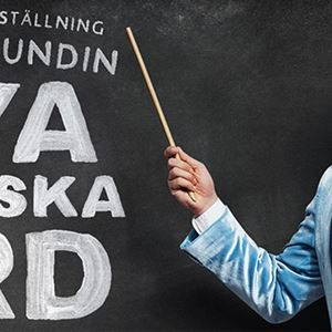Nya Svenska Ord - En humorshow av och med David Sundin