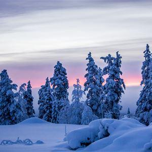 www.ricke.se,  © Malå kommun, Malå missionskyrka