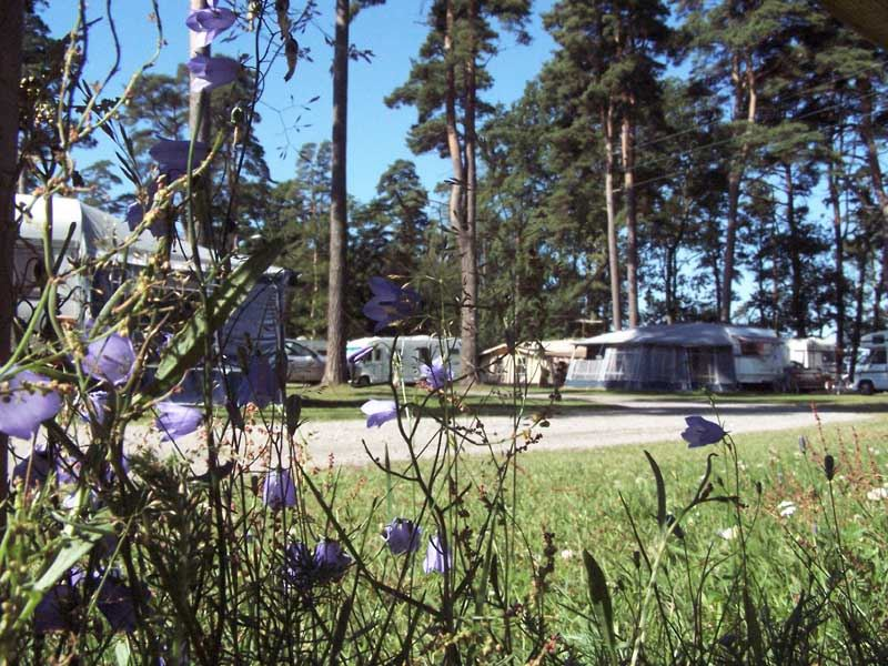 Bromölla Camping & Vandrarhem / Camping