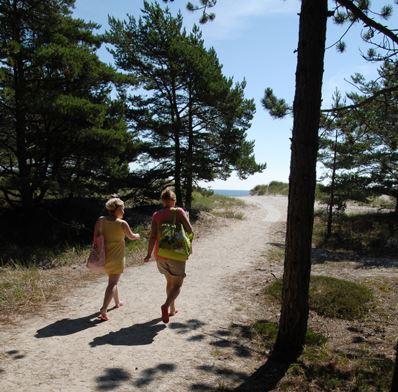 KronoCamping Böda Sand/Camping