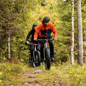 Lapland stuga and tours
