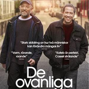 Film: DE OVANLIGA