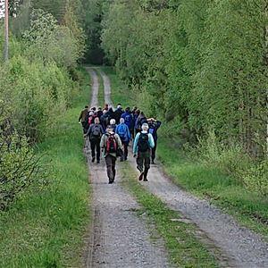 STF - Vandring i Säterdalen