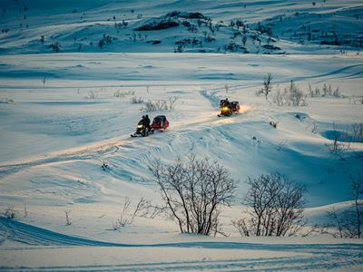 Explore the Arctic – Reisa National Park and Hurtigruten