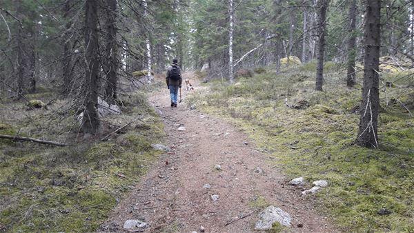 Vandring till Utterfars sten