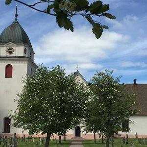 Rättviks kyrka i sommarskrud.