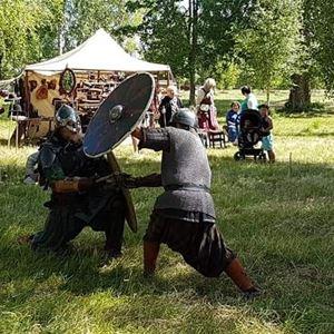 Vikingar intar Säterdalen