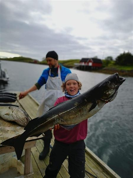 Træna Arctic Fishing,  © Træna Arctic Fishing, Welcome to cozy apartments in Selvær, Træna