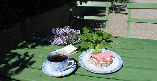 Sommar på Torekällberget