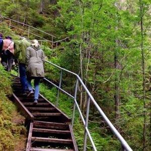 Brant trapp vid Styggforsen.