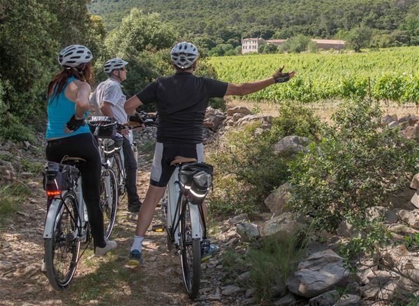 PIC SAINT LOUP GETAWAY WITH « LES CYCLES DU TERROIR » (WINE TOUR)