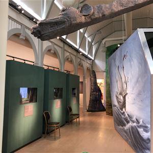 Utställning – Gribshunden, guldgubbarna och Ronnebys historia