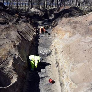 Guidade visningar utgrävningar i Ljungaviken