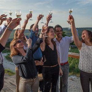Grape Picker for a day - Champagne Le Gallais