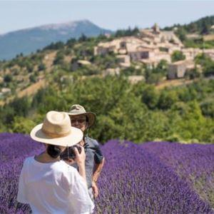 Tour Lavande - Demi-journée à Sault - A la Française ! Provence