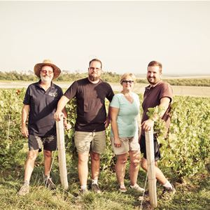 Grape picker for a day – Champagne Dekeyne et fils