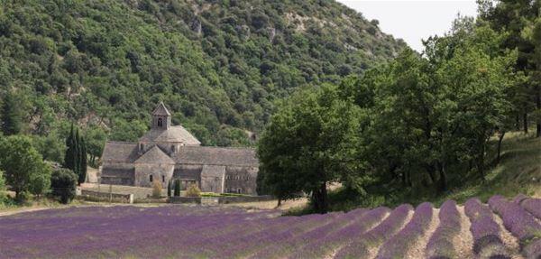 Tour privé Demi-journée 4H30 / 100 KMS - A la Française ! Provence