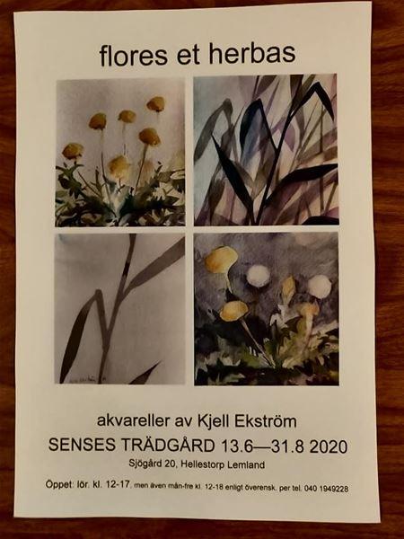 Konstutställning: flores et herbes av Kjell Ekström i Besöksträdgården Senses