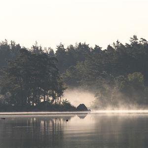 Ingrid Olsson,  © Getnö-Lake Åsnen Resort, Berättarvandring på Getnö