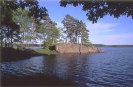 Kalvsjögården, Kalv