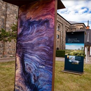 Exhibition - The Overview Effect