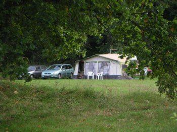 Skånes Djurparks Camping / Camping