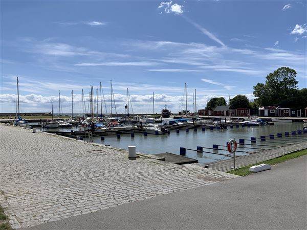 Linus Persson, Smygehamn marina