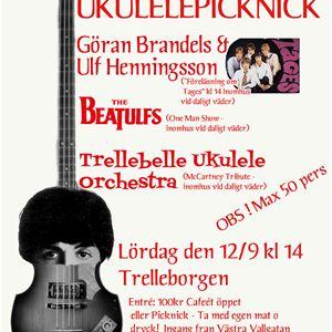 Ukulelepicknick