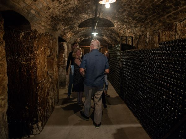 Afternoon tour Epernay & family growers