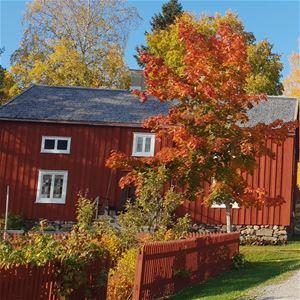 Anna Hed, Hösten på Norra