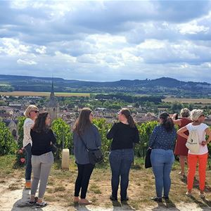 Gourmet guided tour of Aÿ-Champagne
