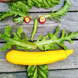 Lär dig mjölksyrejäsa grönsaker