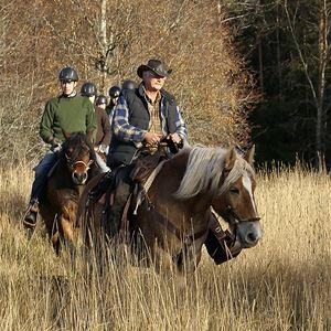 Rid i Vildmark westernstyle - Silverhill Stable