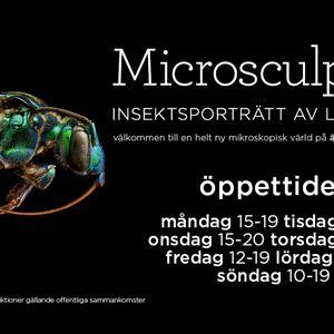 Utställningen Microsculpture