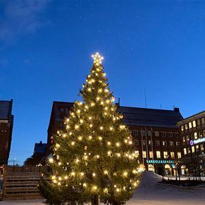 Visit Östersund,  © Visit Östersund, The Christmas Tree of Sweden 2020