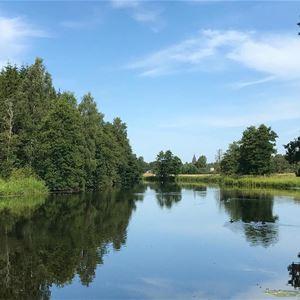 Morgenwanderung am Fluss Lagan  (copy) (copy) (copy) (copy)