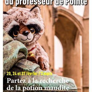 L'enquête du Professeur de Pointe : A la recherche de la potion maudite (visita en francés)