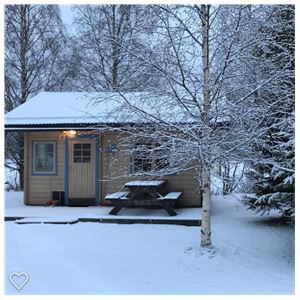 Cabin with frosted birch in front.
