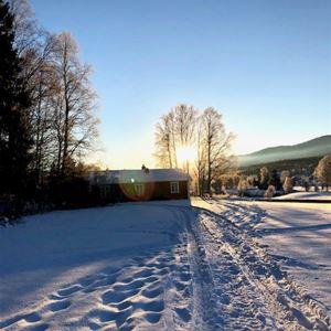 Snö med en upptrampad stig som leder till ett hus.