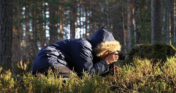 Fototävling: Friluftsliv i nationalparken