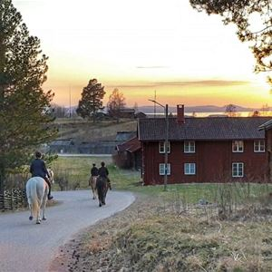 © Mariann Berggren, Ridning genom by.