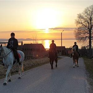© Mariann Berggren, Hästridning.