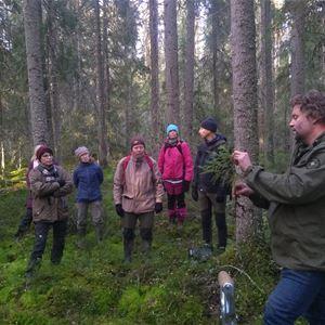 © Annevi Sjöberg, Martin-Jentzen-och-kursdeltagare i en skog nära Stjärnsund hösten 2020